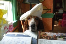 My Three Basseteers... / by Mary Tipping