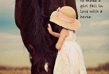 Horse quotes ❤️
