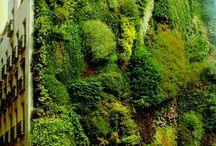 πρασινοι τοιχοι