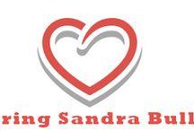 Sandra Bullock Blog / Sandra Bullock Movie & Life Blog