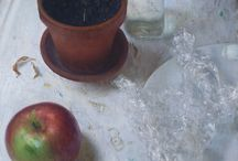 Art Inspiration: Still Life