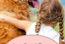 Therapy animals / Therapy dogs / other animals for therapy purposes  Pins from Pinterest