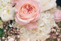 Wedding Flowers / Colors / Inspiration