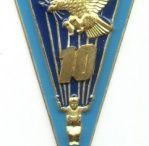insignias paras / paraquedistas
