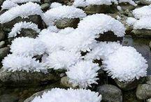 winter tél
