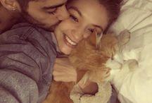 Gigi e Zayn