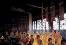 Wing Chun and Wushu