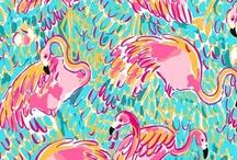 lilly patterns  / by Heather Schott