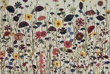 Flores secas y prensadas