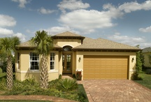 TownPark - Reef / Minto Homes - TownPark - Reef Model