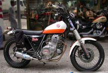 cafe racers 250