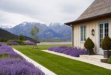 House garden space