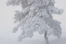 Let in snow dwarrenlende vlokjes!!!