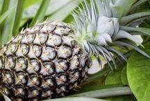 tuin ananas