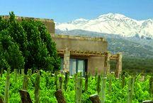 Rosell Boher Lodge / Guest House y Lodges en Agrelo, Mendoza.