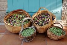 Olives... / Des olives, des olives et encore des olives !