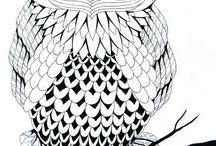 Chouette/Owl / https://www.facebook.com/Les-colos-de-kiki-780034588779254/