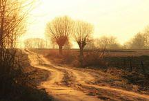 Polish roads....