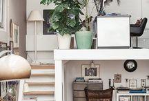 Rośliny w domu / Plans at home