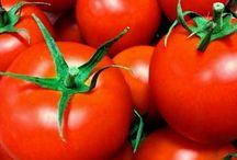 野菜育て / 野菜を育てる