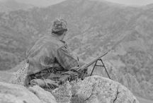 Алжир 1954-1962
