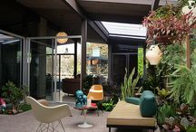 Eichler - best of the best