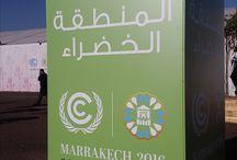IFFEN pendant la COP22