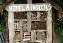 hôtel à insects