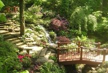 Garden Style / Landscape Design and Gardening