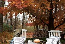 Autumnfeelings