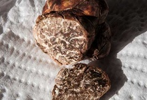 Truffles / Truffles are quite rare and expensive, so they are considered a delicacy by many people. Technically, they are not actual mushrooms, but they are closely related. Truffles have a bumpy, uneven appearance. They have a strong, earthy or even meaty taste, and the darker the truffle, the stronger the taste.