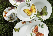 Porcelana pintada / Porcelana pintada / by Lourdes De la Mata