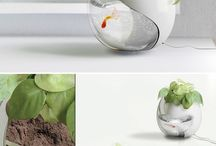 Interesting Ideas / by Kristen Campbell