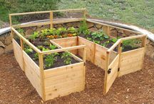 Garden - Construction