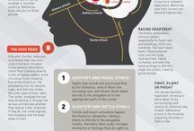 Infographic health