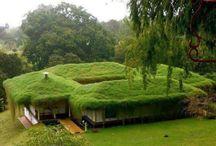element: roof