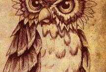Owls / by Jamie Yancey-Ross