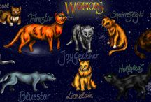 Warrior cats / About warriors