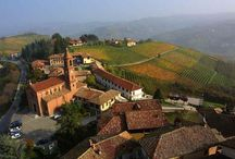 Dolcetto wine, and its terroir
