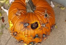 Halloween and Fall / by Kim Paredes-Brown
