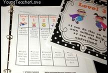 Lembar Kerja (Worksheet) / Bermacam-macam lembar kerja/ latihan soal, sesuai dengan tema yang sedang diajarkan di kelas.