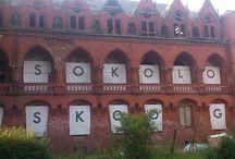 Konteksty 2013 / Contexts 2013 / Festiwal Sztuki Efemerycznej / Sokołowsko, Poland