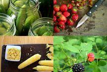 Canning/Preserving/Fermentation