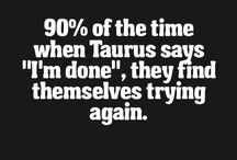 Taurus - what you should know