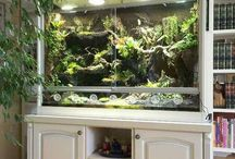 Aquarium-Terrarium / Inspirations for our fish friends, ways how to care about your fish better