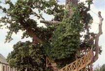 Tree Houses / by Lisa Warner Lee-Holt