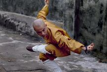 Action / kung fu mma karate...