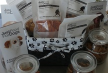 Best Dog Food & Treats