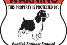 English Springer Spaniel Signs and Pictures / Warning and Caution English Springer Spaniel Dog Signs. https://www.signswithanattitude.com/english-springer-spaniel-signs.html