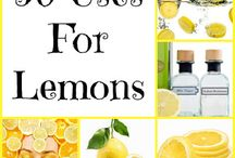 All About Citrus / Orange, Lemon and Lime